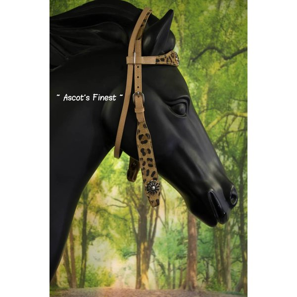 Western Headstall Jaguar - Pony, Cob en Full