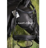 Ascot's Finest Black handpicked leather English bridle- Full