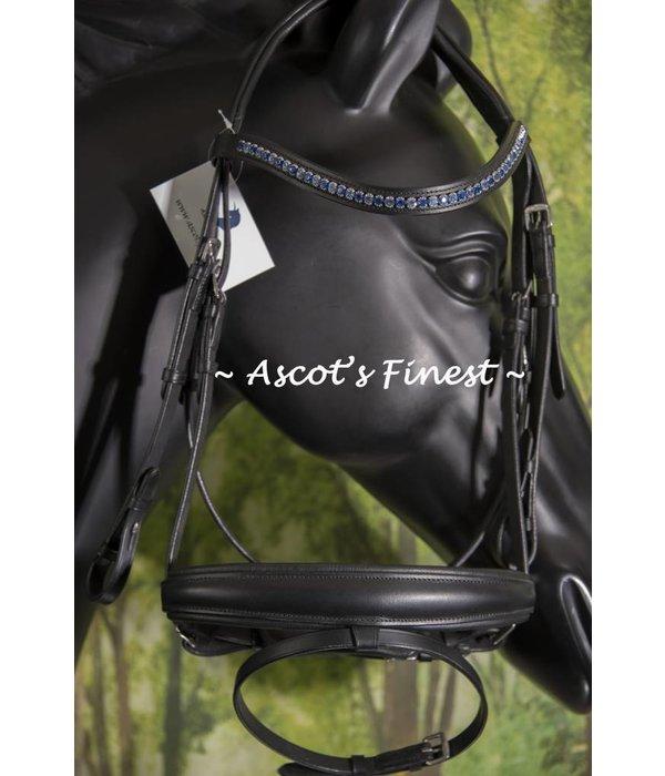 Ascot's Finest Zwart rundleer met blauwe frontriem - Full