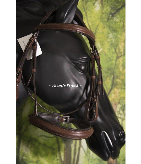 Ascot's Finest Havanna bruin trens hoofdstel - grote Pony/kleine Cob