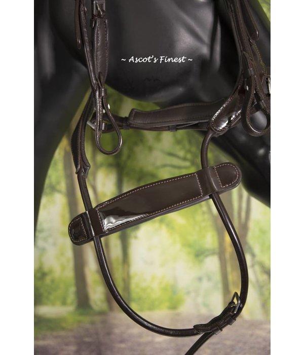Ascot's Finest Cognac brown bridle with latest noseband - Cob