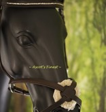 Ascot's Finest Havanna brown figure 8 jumping bridle - Cob and Full