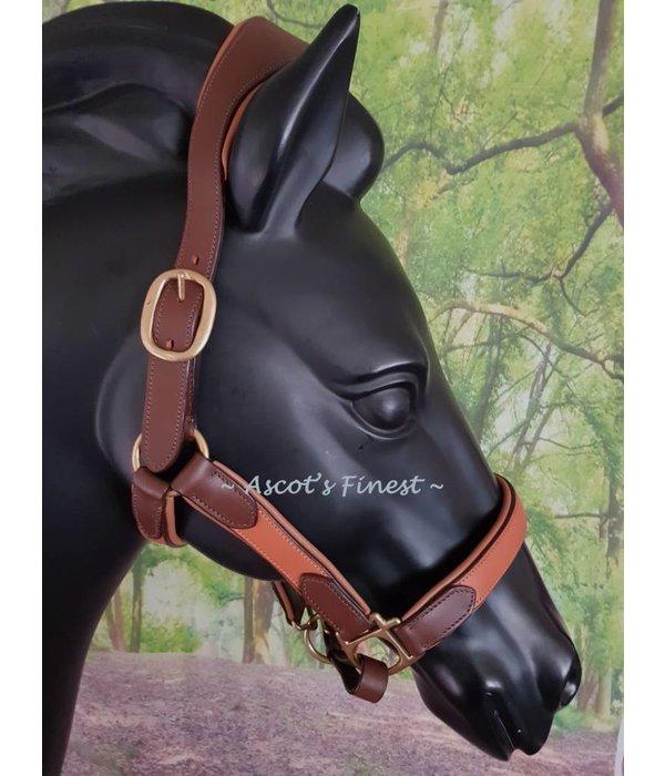 Ascot's Finest Bruin rundlederen halster - Cob, Full, XFull en Trekpaard
