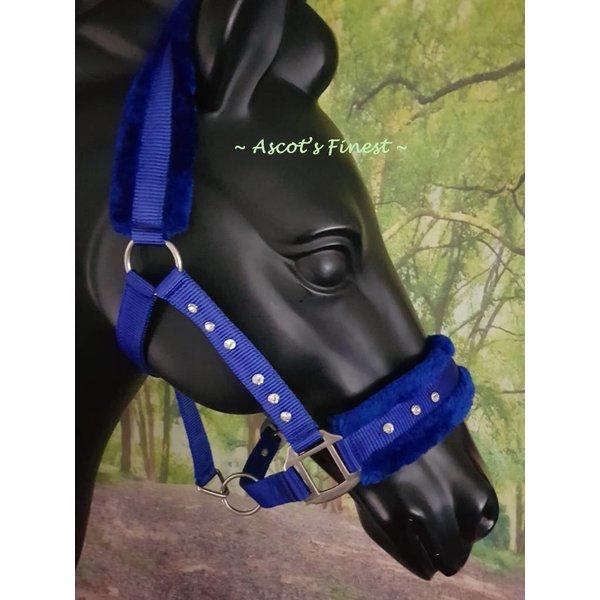Nylon halter - Blue with strass - Mini Shet - XFull