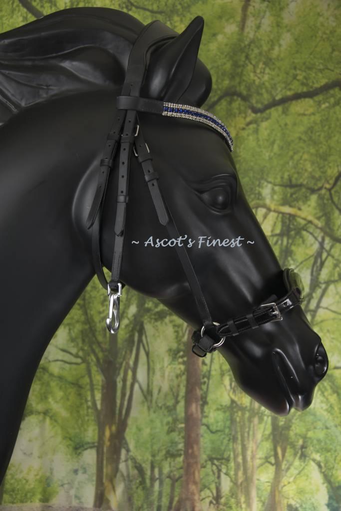 Ascot's Finest Zwart rundlederen hoofdstel met bit klips en blauw/witte frontriem - Full en Cob