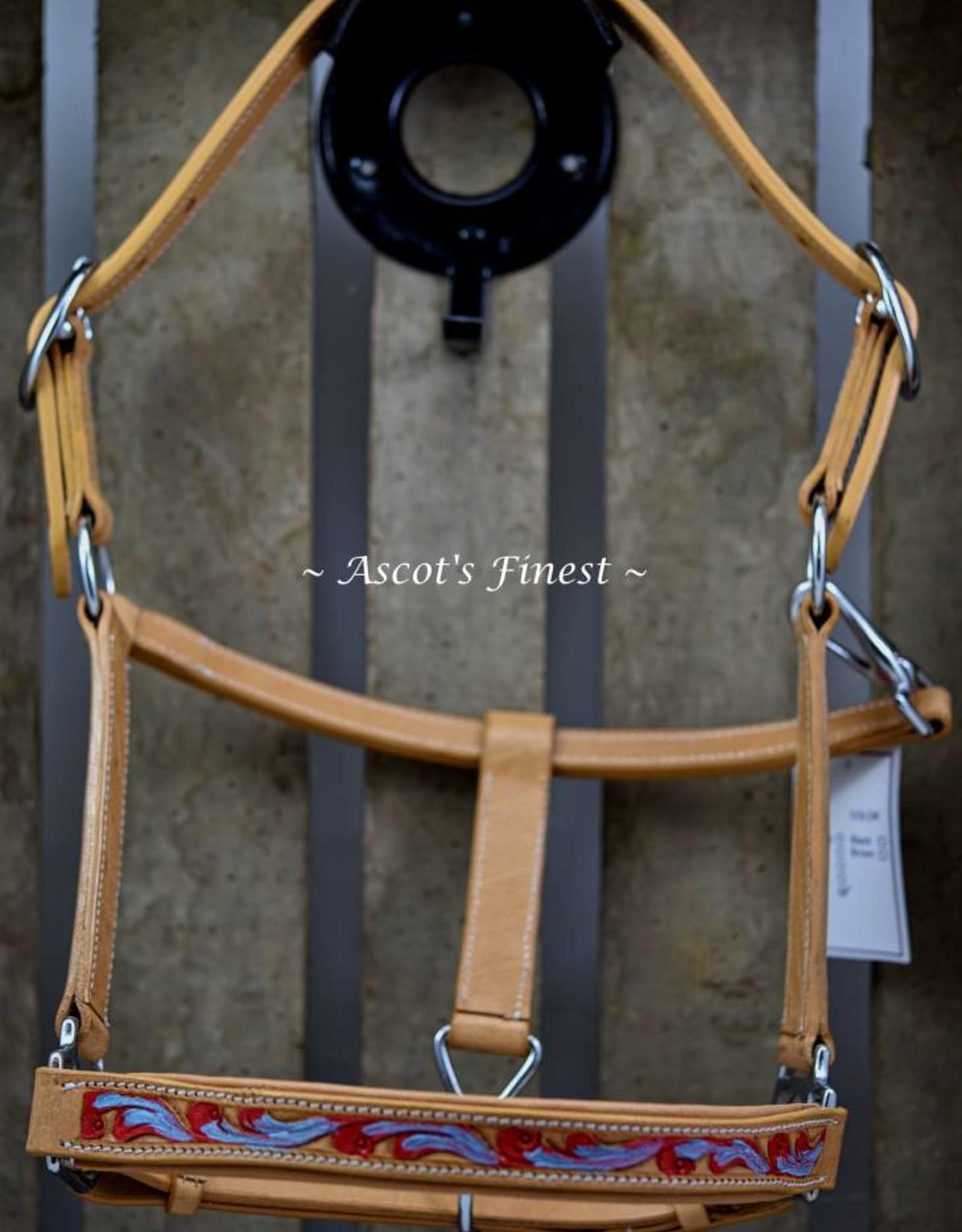 Ascot's Finest Rundlederen halster uitgesneden en met kleur - Full, Cob en Pony