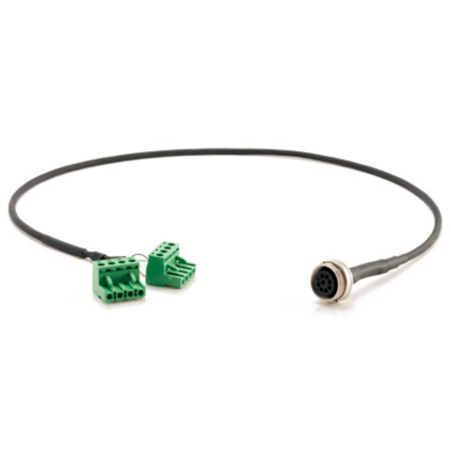 ZCC995 , Analog Output/Relay/Alarm Cable Assembly for IPM650-1