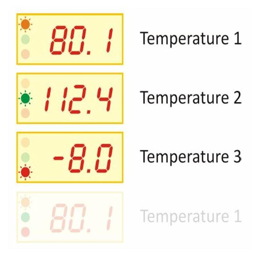 TDS - Industriële thermometer-3