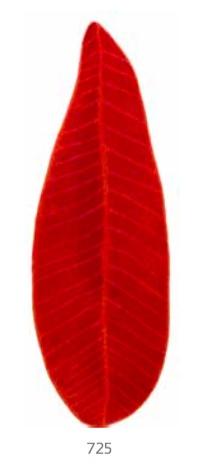 Habidecor Bath carpet FEUILLE (100% cotton)