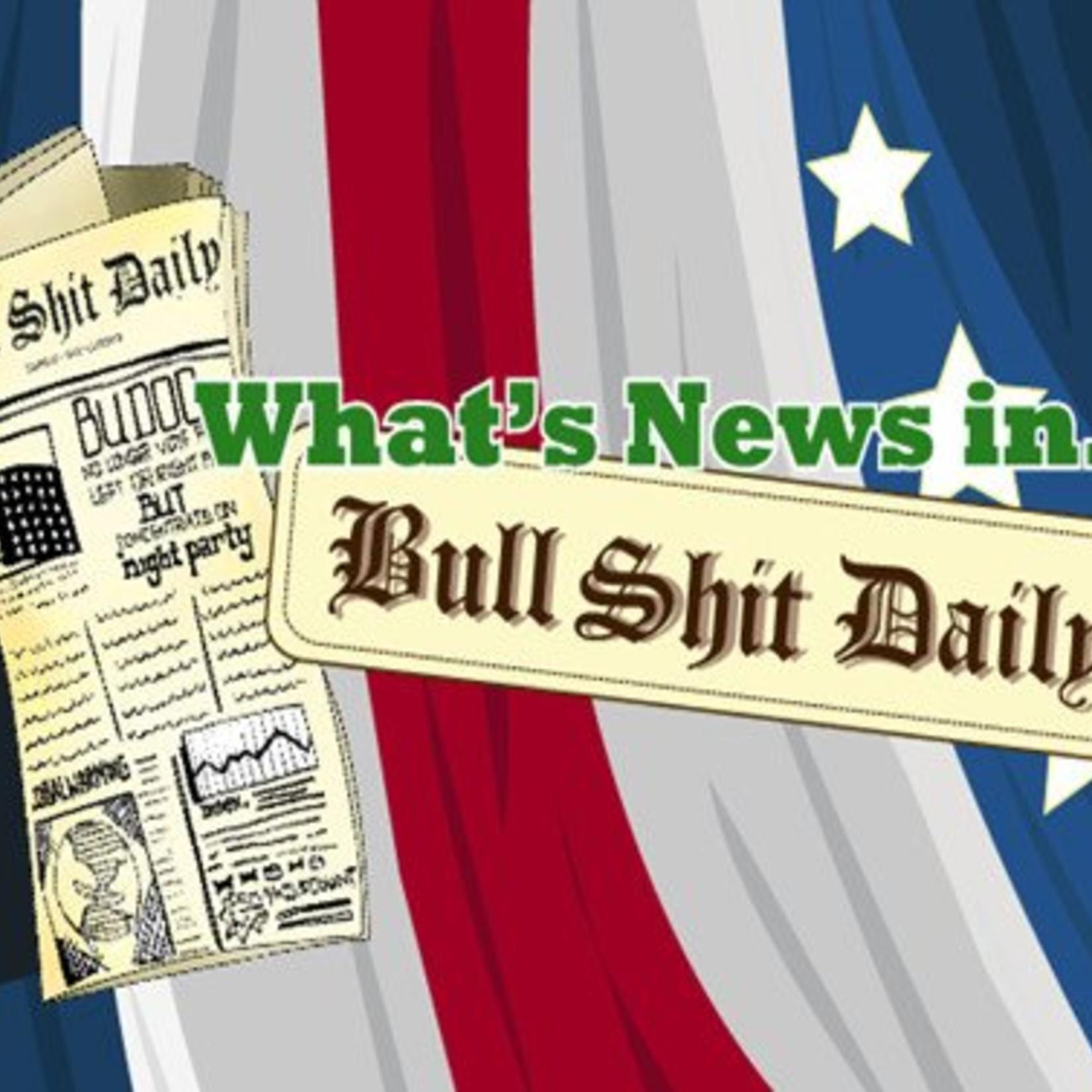 Spaarpot Dhink Bull Shit Daily