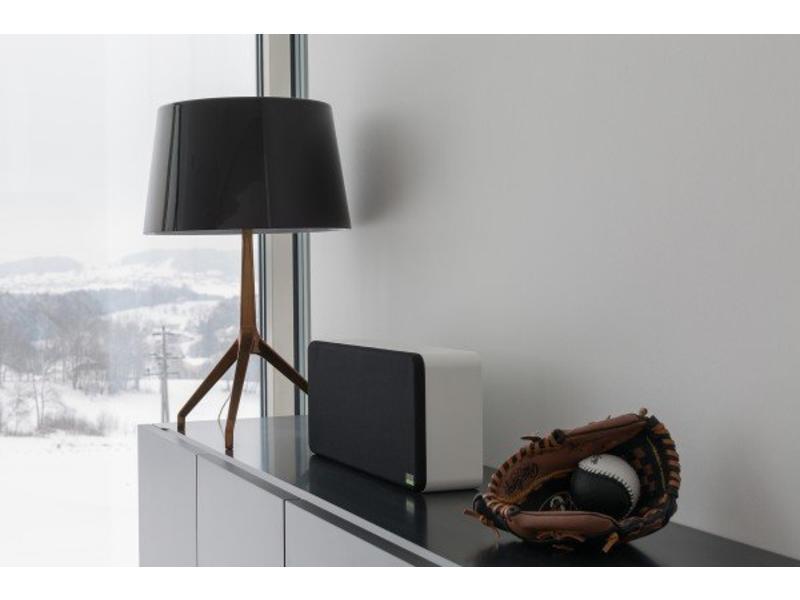 Loxone Speaker wand / boekenplank