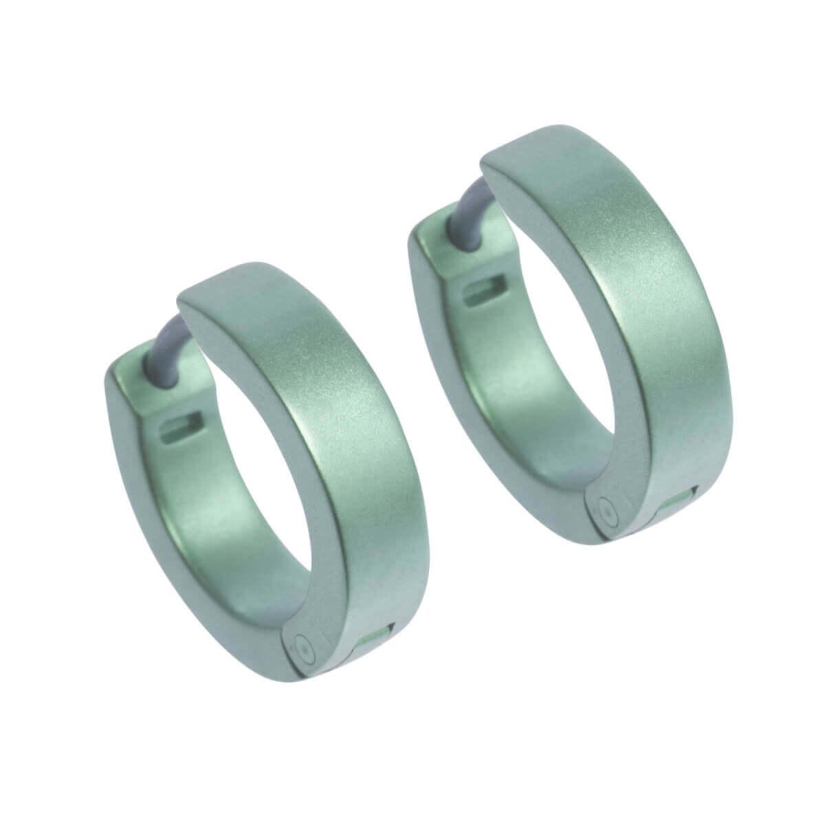 Naisz Titanium Design Earring 12mm x 4mm  2017326-40