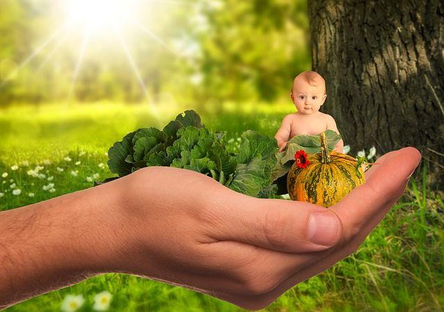 Natuurlijke producten voor het hele gezin - 4 pagina's vol!