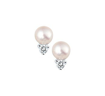 LAVI Freshwater pearl Ear Studs Silver