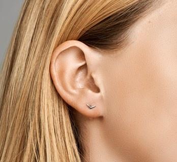 V Ear Studs
