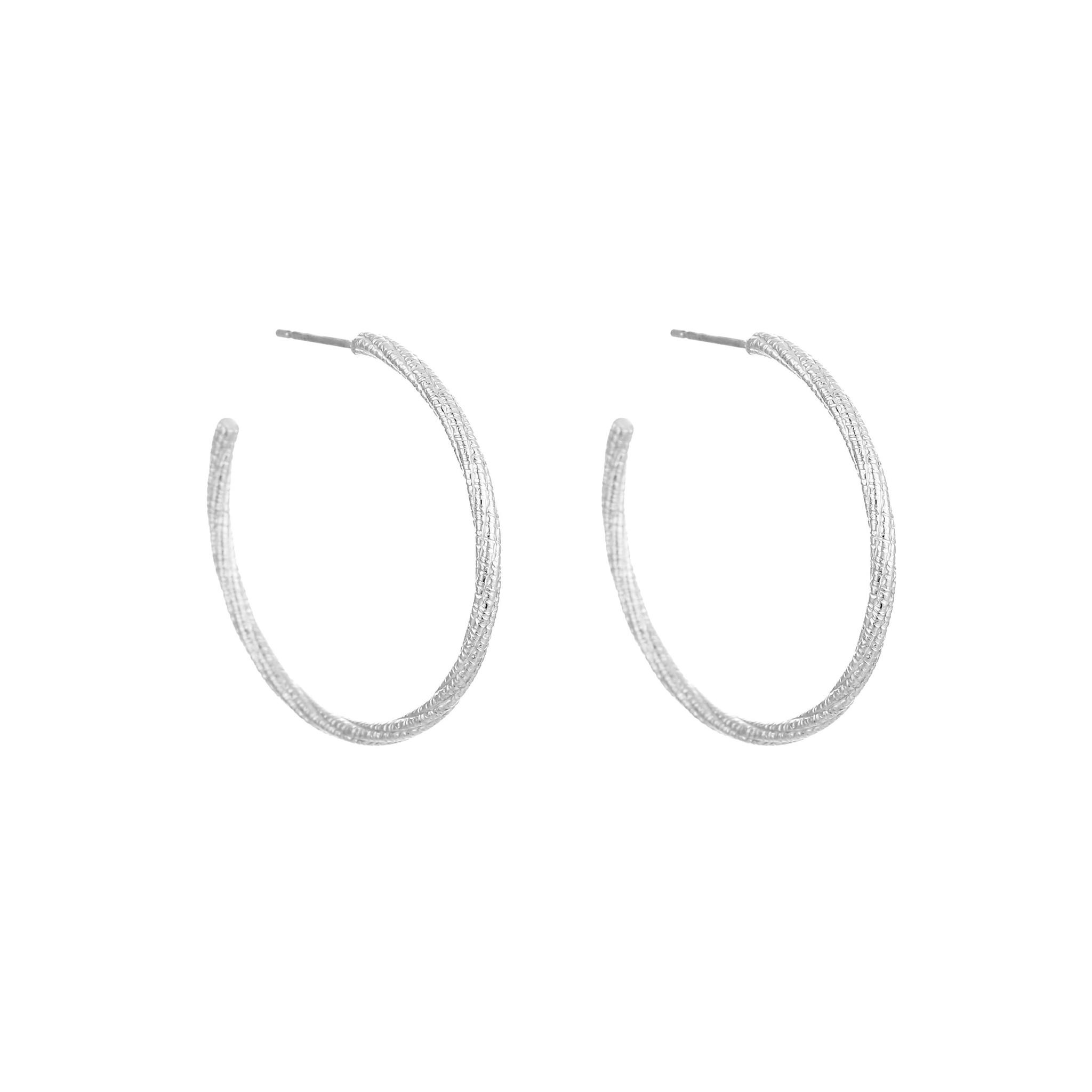 Stainless Steel Hoop Earrings with Shiney Pattern