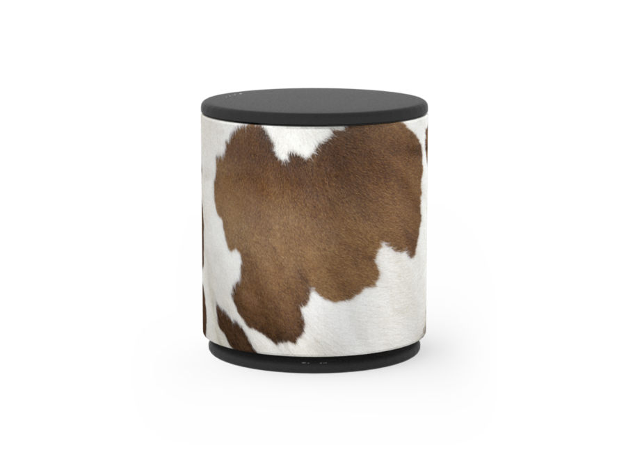 Cover Beoplay M5 - Cow