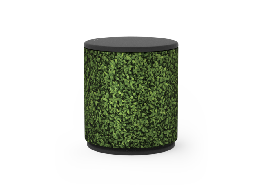 Cover Beoplay M5 - Plants
