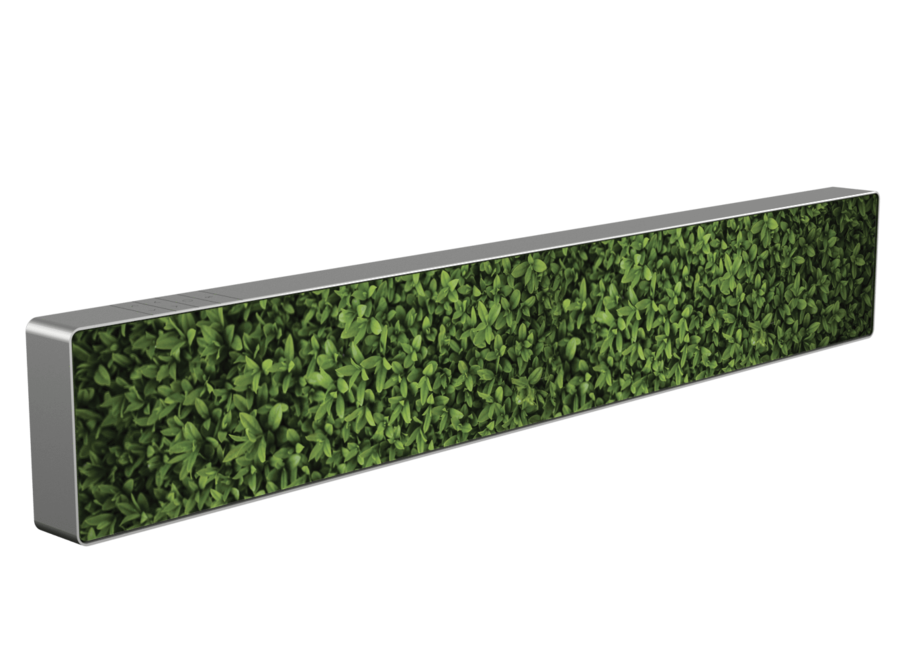 Cover Beosound Stage - Plants