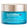 Moisture Boost Cellular Youth Rich Hydration Cream 50ml
