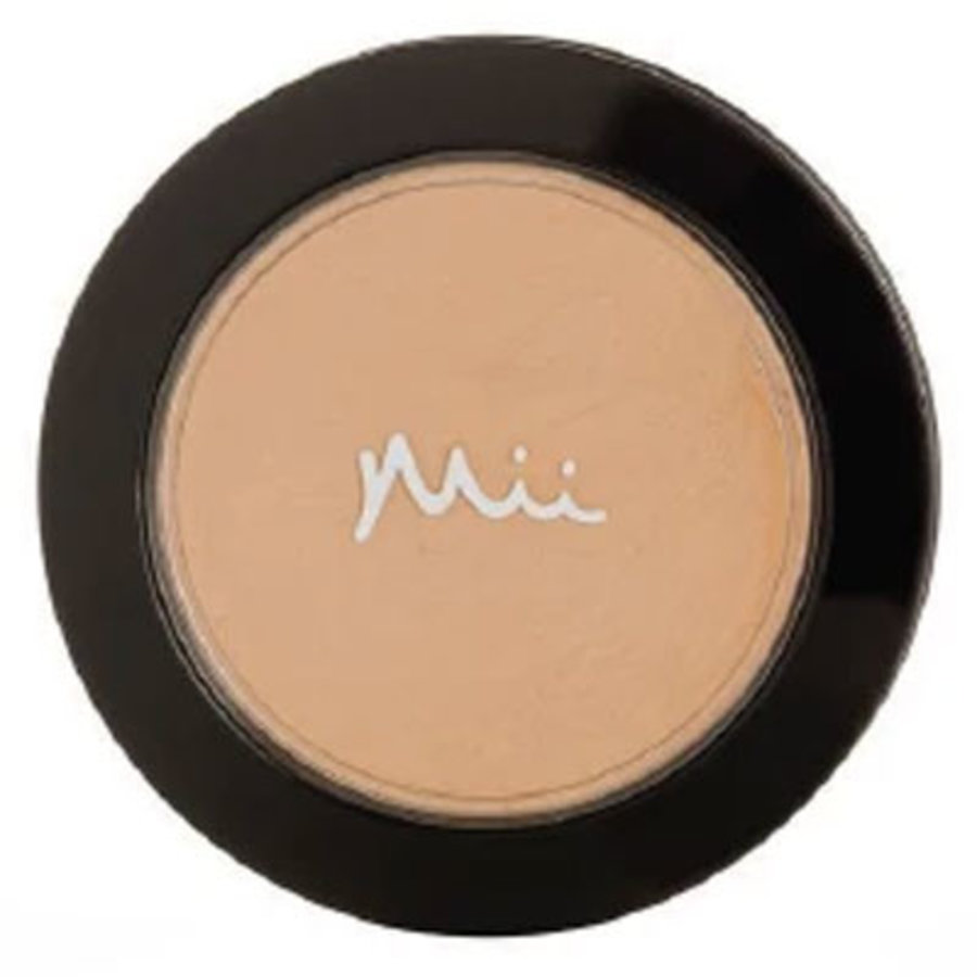 Mineral Foundation Irresistible Face Base 04 Precious Nude