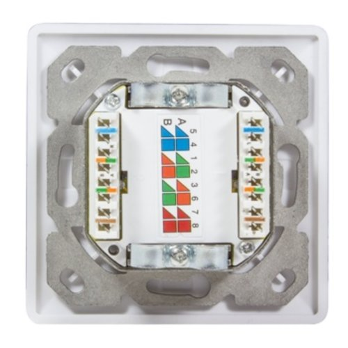 Cat6 Wall Outlet 2x RJ45 Vertical Input RAL9010