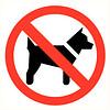 Pikt-o-Norm Pictogramme de sécurité accès interdit aux animaux