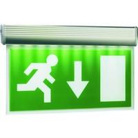 Elro Panneau d'éclairage de secours Elro avec lampe à LED, y compris quatre étiquettes de direction