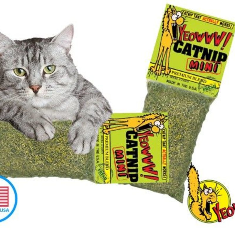 Yeowww! Mini catnip