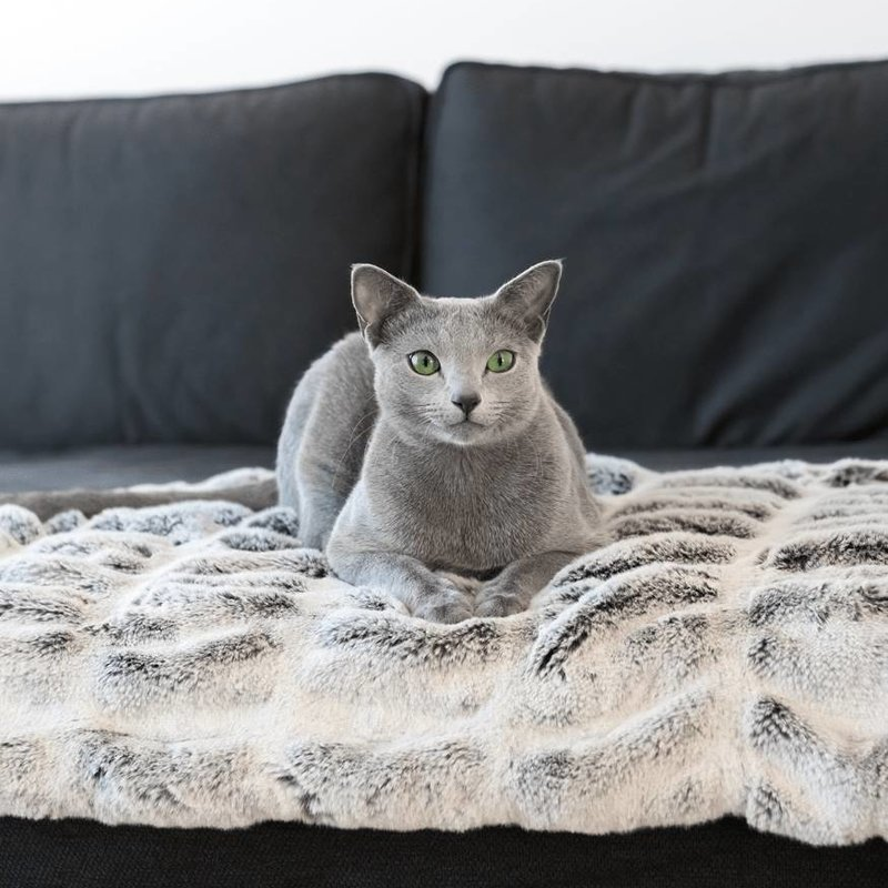 MyKotty Fibi cat blanket