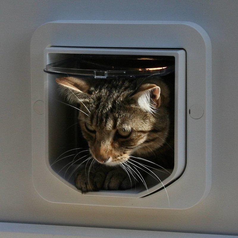 Sure Petcare Microchip Kattenluik