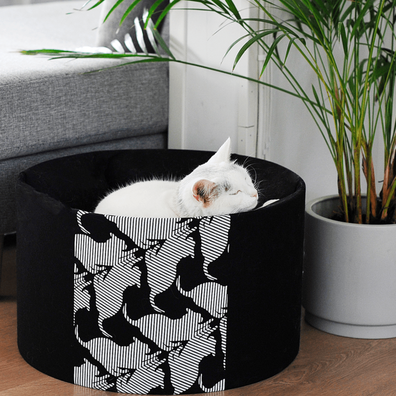 MyKotty OTI design kattenbed
