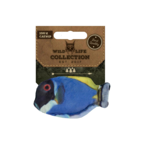 Wild Life Collection Wild Life Collection Blue Tang (Blauwe Doktersvis)