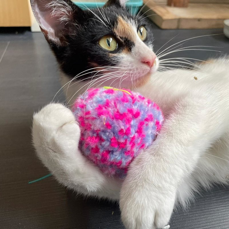 Purrs Aromatherapy Shaggy Ball