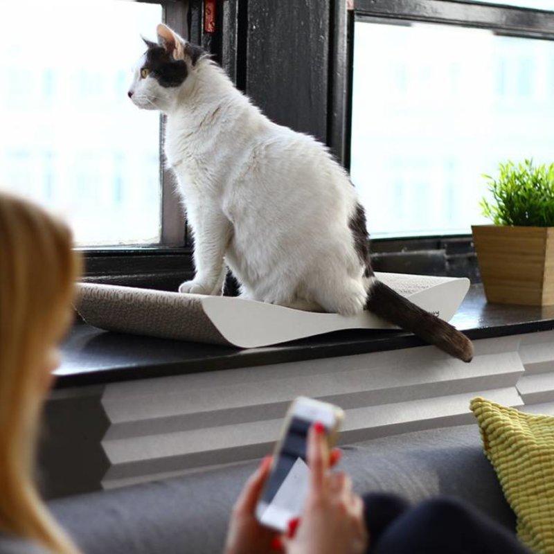 MyKotty TOBI scratching furniture