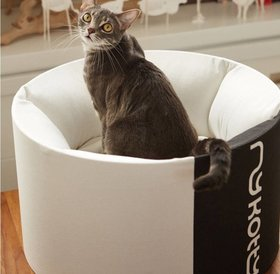 MyKotty OTI design cat bed