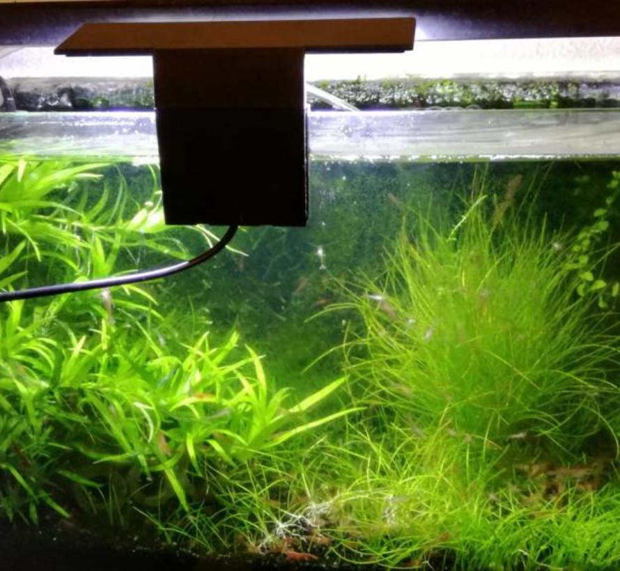 Led verlichting voor kleine aquaria
