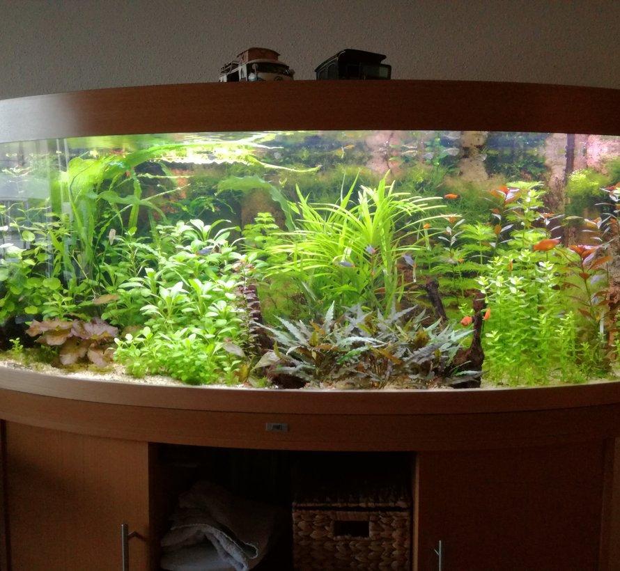Aquarium led verlichting  (dubbele ledstrip) alle lengtes waterdicht. Scroll naar beneden voor de lengtes boven de 125 cm.