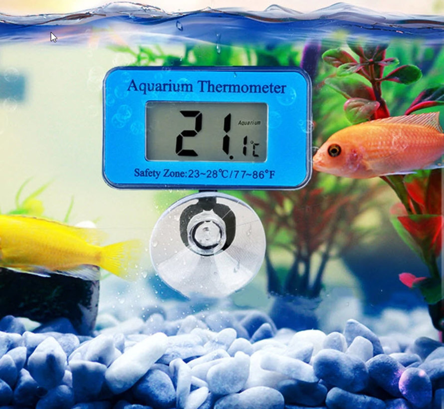 Thermometer (digitaal)