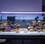 Zeewater led verlichting