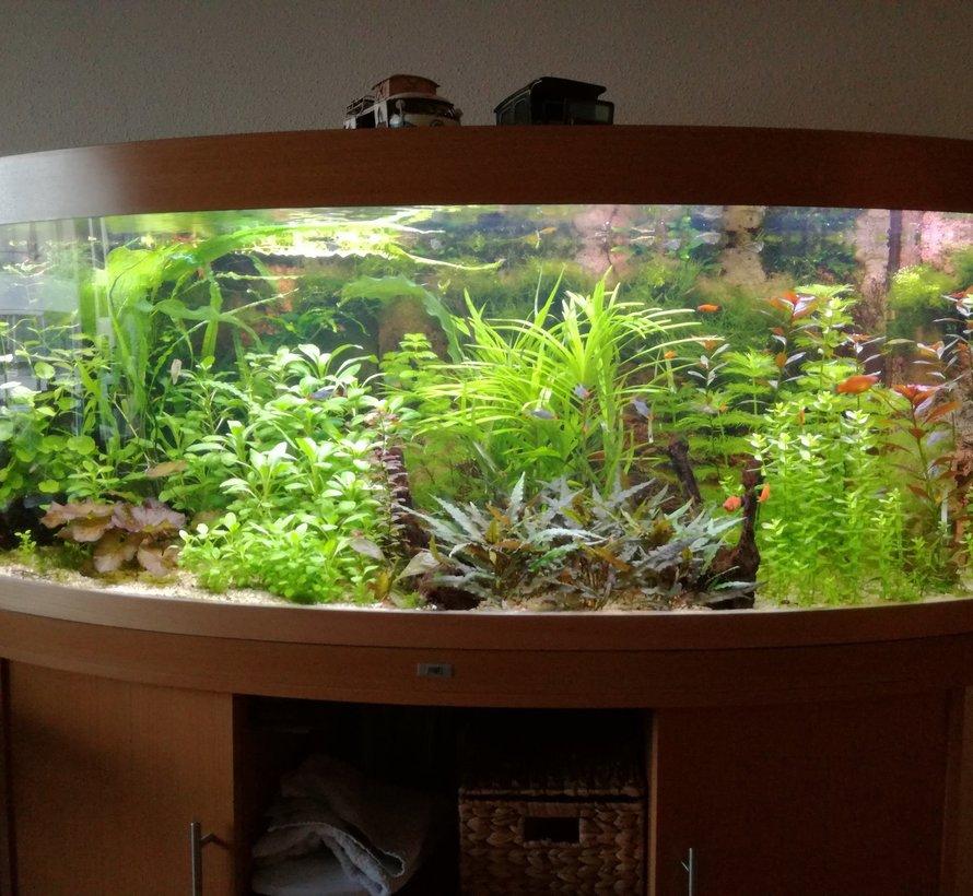 Aquarium led verlichting RGBWW  dubbele led strip waterdicht - Copy