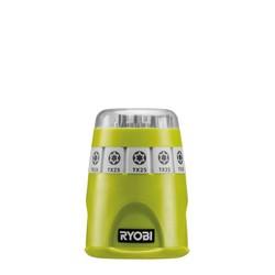 Kit d'embouts Torx avec porte-embouts magnétiques + bande de fixation avec crochet en S RAK10TSD