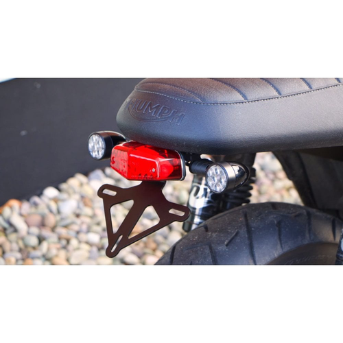 Motone Tail Tidy Kit voor Liquid Cooled Triumph