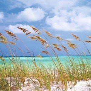 Komar Fotobehang  8-515 Ocean Breeze