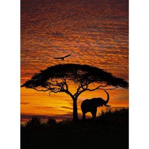 Komar Fotobehang  4-501  African Sunset