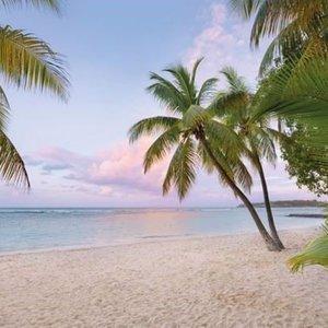 Komar Fotobehang vlies  4-528   Paradise Morning