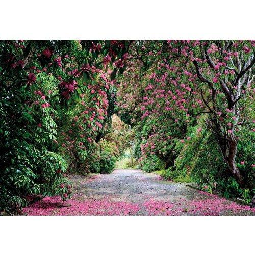 Komar Fotobehang  8-985 Wicklow Park