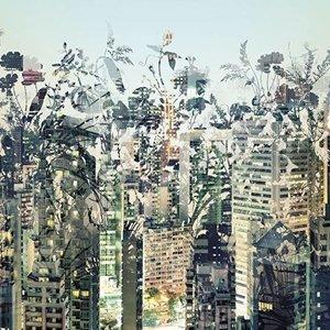 Komar Fotobehang  8-979 Urban Jungle