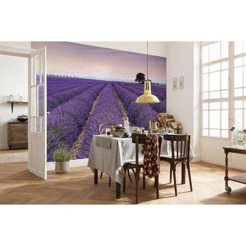 Komar Fotobehang  vlies XXL4-036 Provence