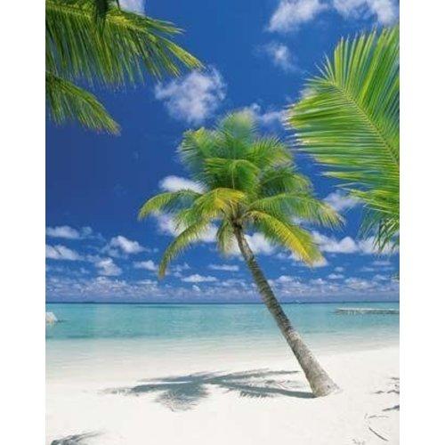 Komar Fotobehang  4-883 Ari Atoll